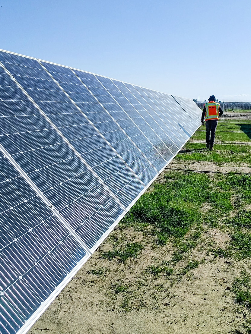 Electrician walking through a field of solar panels